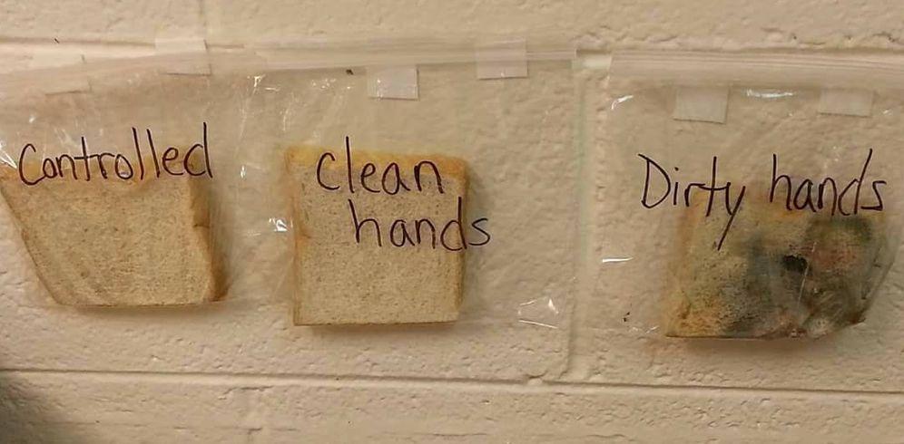 Foto: A primera vista se sabe cuál se ha tocado con las manos sucias (Donna Gill Allen)