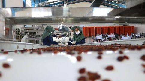 El CSIC crea un detector rápido de covid-19 en las superficies de procesado de alimentos