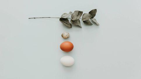 Hay más tipos deliciosos de huevo, no solo de gallina