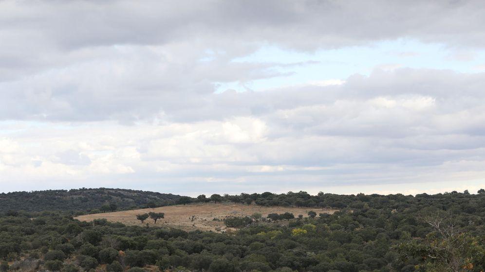 Foto: La localidad en Retortillo (Salamanca) donde Berkeley Energía quiere imponer su mina de uranio. (Reuters)