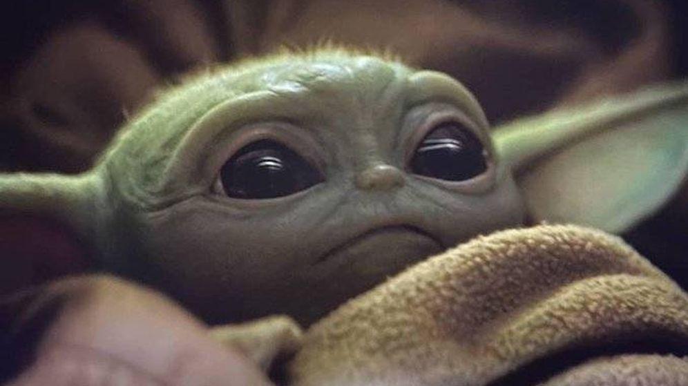 Foto: Así es el 'bebé Yoda' que se ha hecho viral.