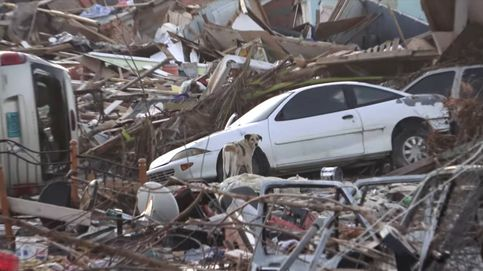 Utiliza sus drones para encontrar y rescatar perros perdidos tras el huracán Dorian