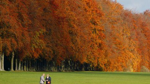 Un diván en el parque: salud mental y zonas verdes en Europa
