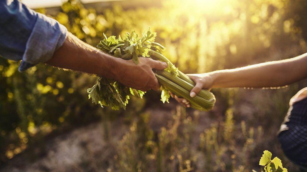Sabes lo que es la dieta ecointeligente: más sana y mejor para el planeta