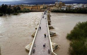 El presidente del Guadalquivir da dos adjudicaciones 'a dedo'