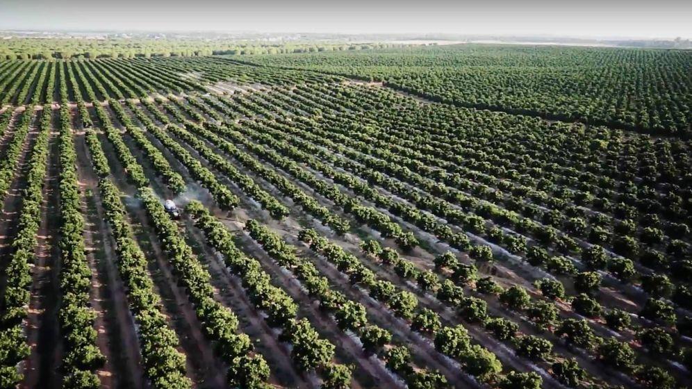 Foto: Una de las explotaciones agrícolas de Martinavarro.