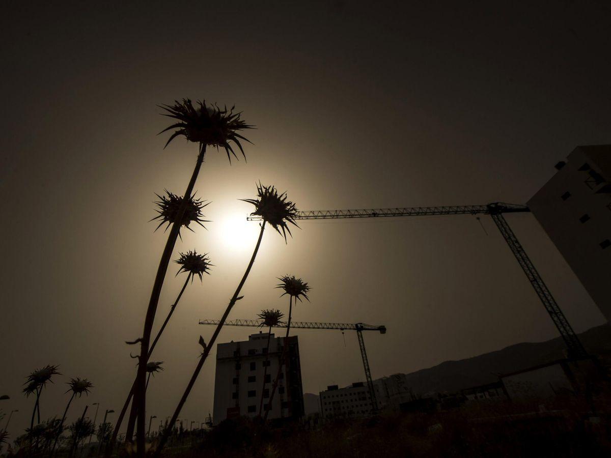 Foto: Las altas temperaturas nocturnas amenazan la salud (EFE)