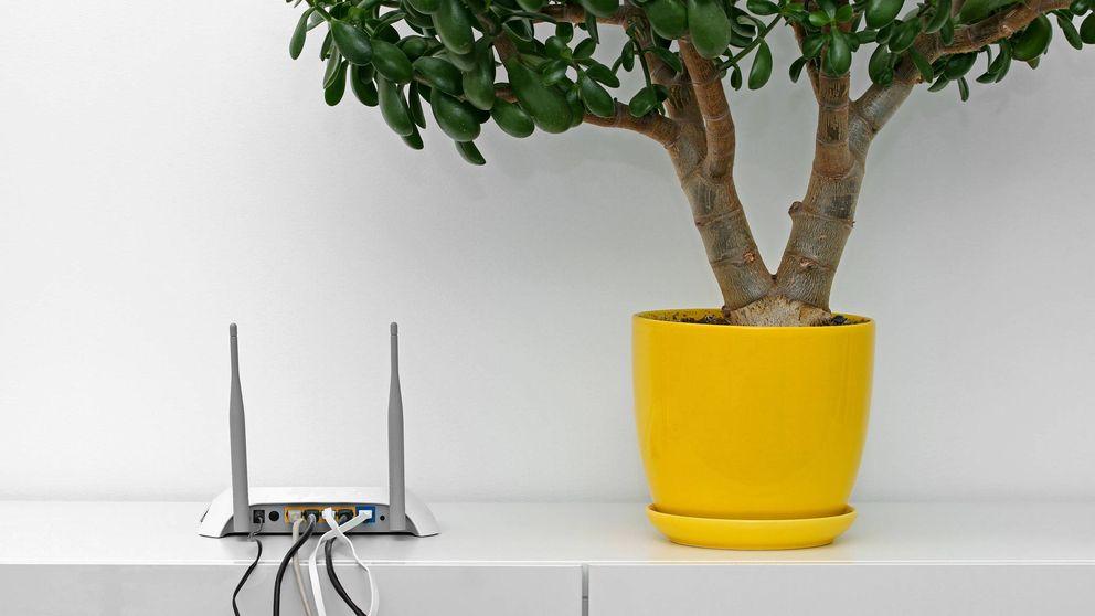 ¿Internet no llega a tu habitación? Cómo arreglarlo con un amplificador wifi