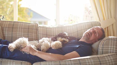 ¿Eres de los que necesita dormir siesta? La genética influye más de lo que piensas