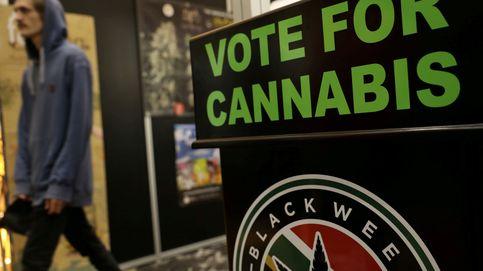 EEUU da el primer paso para legalizar el cannabis en todo el país, el sector se dispara