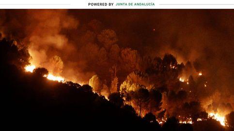 El plan andaluz de 171 millones de euros para combatir los incendios forestales