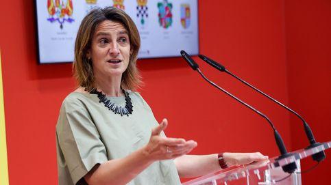 Ribera defiende que las energías renovables deben respetar la biodiversidad