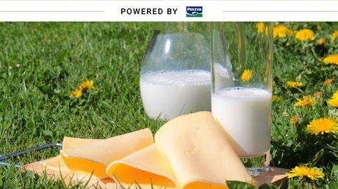 Azúcar excesivo en la dieta: los lácteos no son los responsables