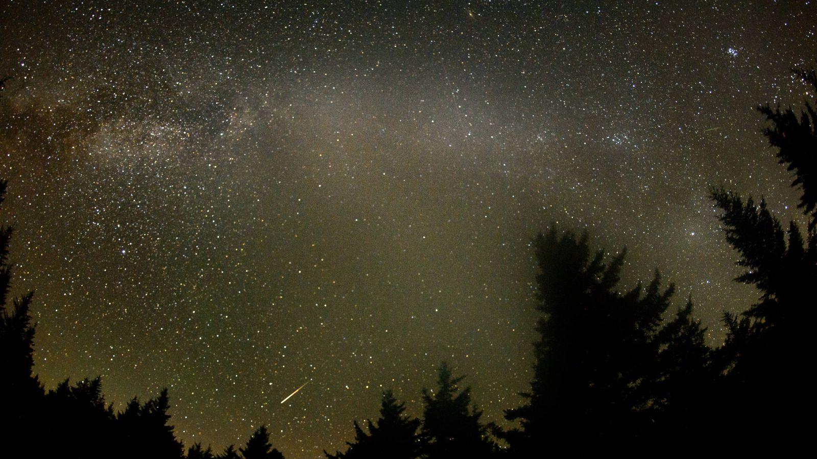 Foto: Una imagen del cielo en Virginia durante las Perseidas (NASA)