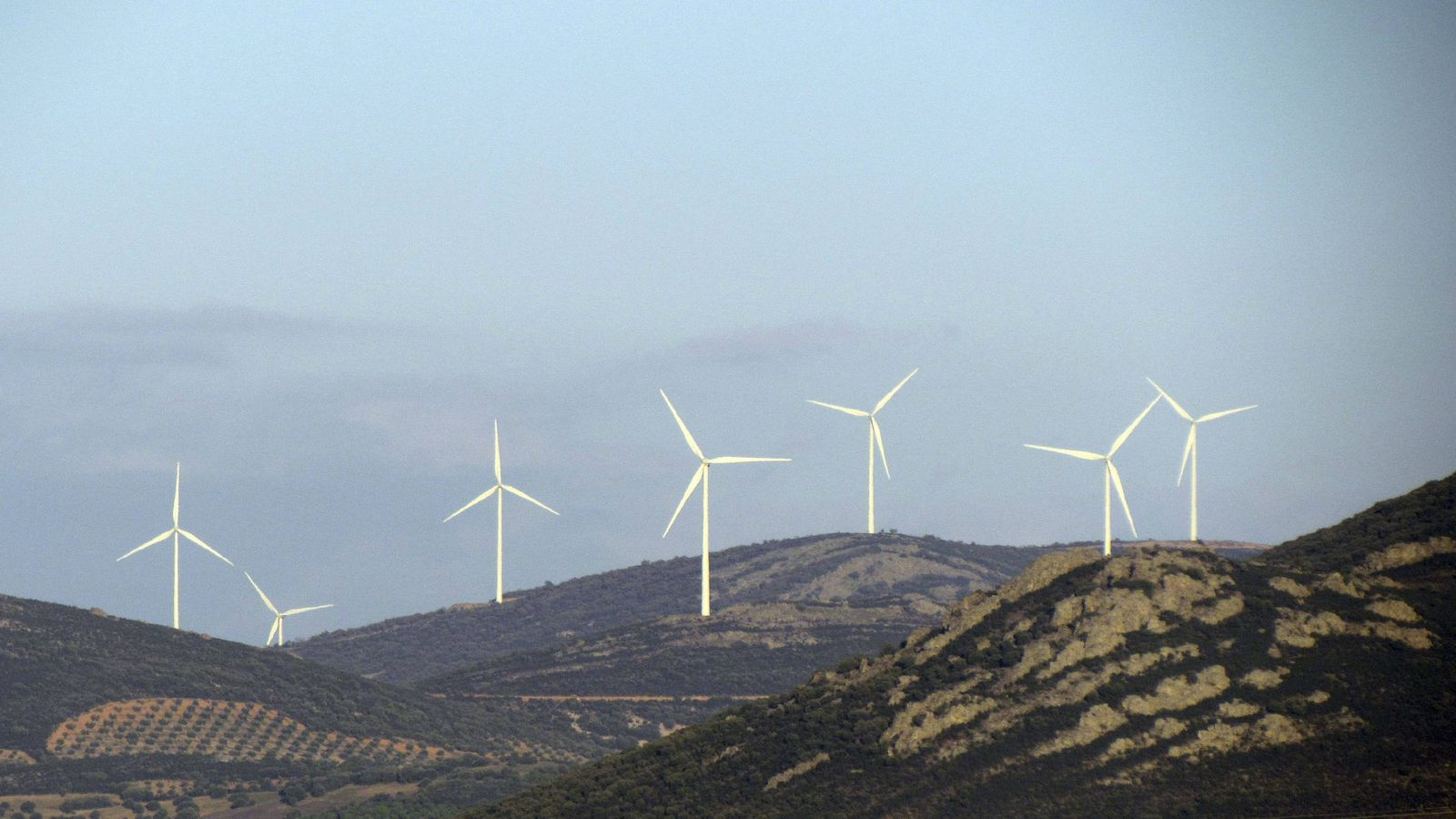 Foto: Parques eólicos promovidos por Enel en Ciudad Real. (EFE)