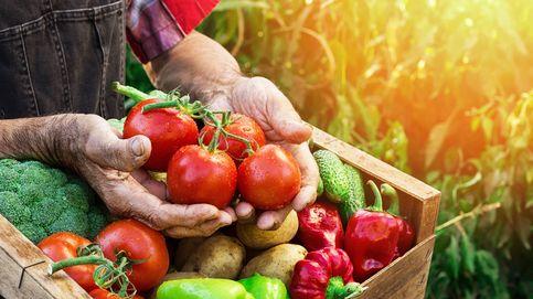 Una nueva forma de comprar fruta: te la venden tus vecinos
