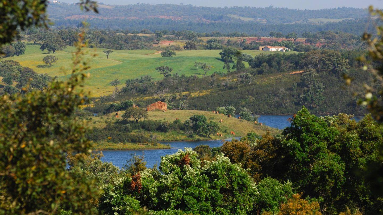 El paisaje alentejano ofrece rincones así de espectaculares y verdes. (Foto: Turismo de Alentejo)