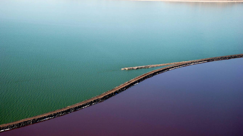 La mitad de este lago ha desaparecido por el ser humano (y el pato lo pagan las aves)