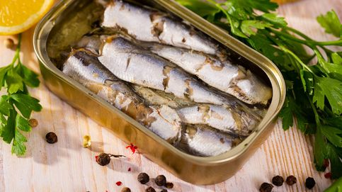 Un estudio español desvela este 'poder' de las sardinas