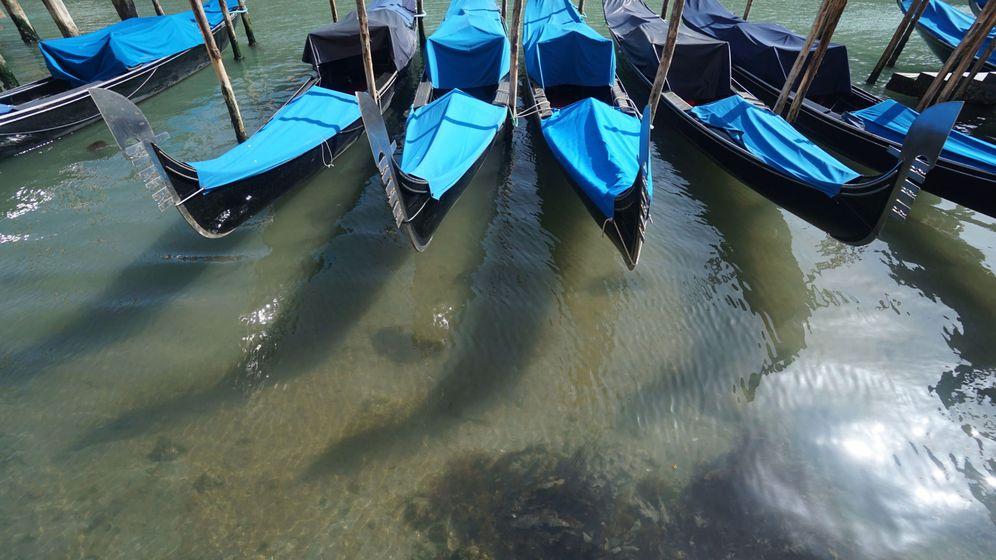 Foto: Aguas más claras en Venecia, fruto de la ausencia de barcos en los canales de la ciudad. (EFE)