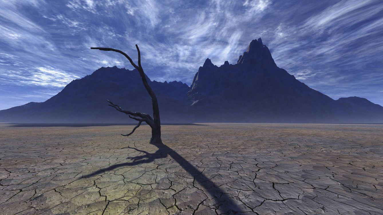 Foto: La sequía, causa directa de las tórridas temperaturas. (iStock)