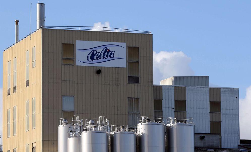 Foto: Vista de la fábrica del grupo Lactalis en Craon, Francia. (EFE)