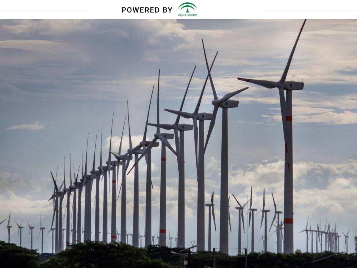 Foto: La Junta pretende apoyar proyectos que inviertan hasta 17.000 millones en renovables en la región. (EFE)