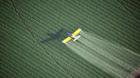 Pesticidas: ¿estamos ingiriendo veneno con cada cucharada?