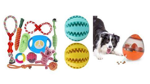 Los mejores juguetes para perros para jugar, aprender y mordisquear sin parar