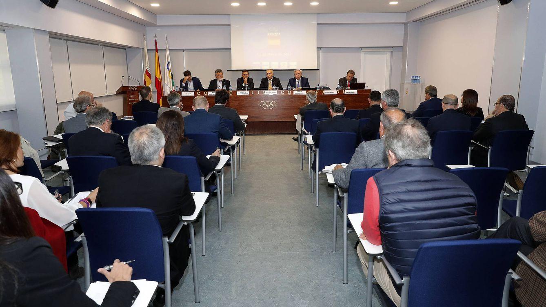 Las federaciones y el Comité Olímpico Español piden cambios en la Ley del Deporte