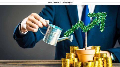 Dónde invertir tus ahorros cuando los depósitos bancarios ya no son rentables