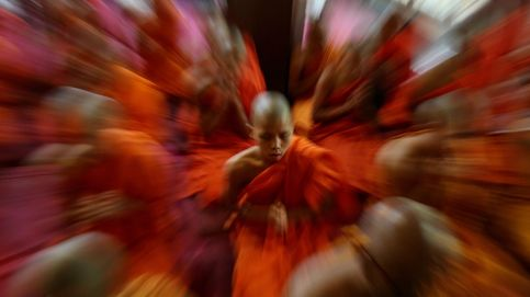 2.562 aniversario del nacimiento de Buda y las Meninas, en Madrid: el día en fotos
