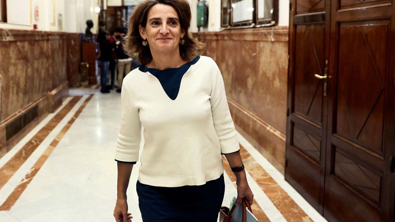 La ministra de Transición Ecológica, Teresa Ribera, en el Congreso. (EFE)