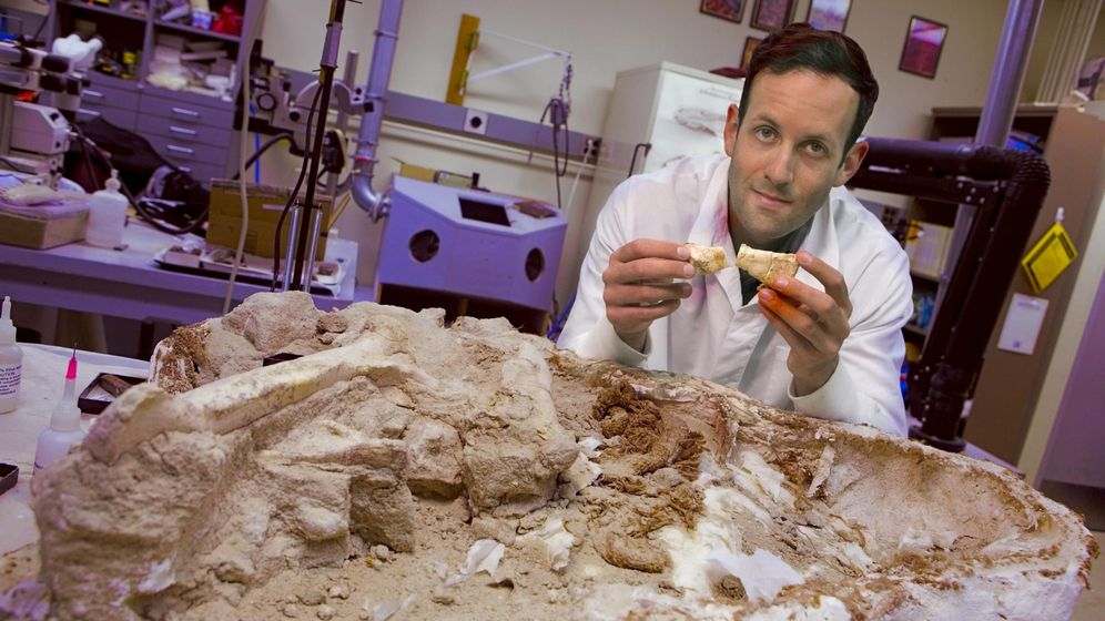 Foto: Michael D'Emic y restos fósiles de un Majungasaurus. Foto: REUTERS/John Griffin