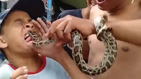 Un niño se burla de una serpiente y esta se venga mordiéndole la lengua
