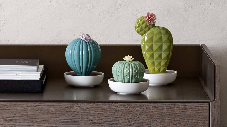 Foto: Tres modelos de cactus de porcelana Lladró que sirven como difusores de aromas líquidos .