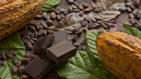 Los beneficios de tomar cacao, pero  siempre natural