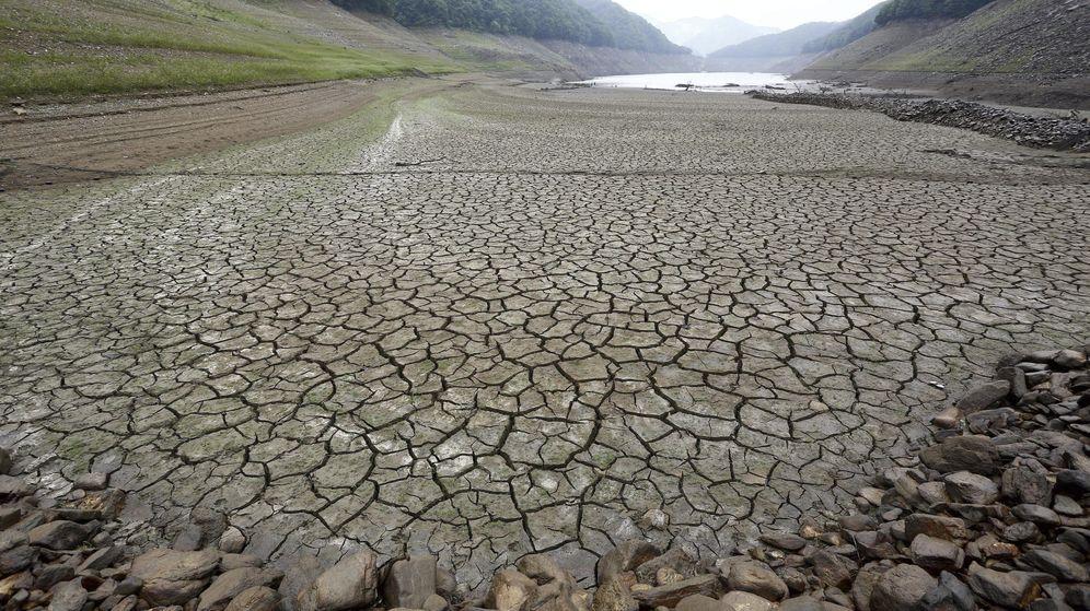 Foto: Campo escamado por la sequía