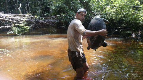 ¿Contra qué lucha Frank de la Jungla? El tráfico de animales en Tailandia