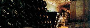 Foto: Los mercados atípicos del Rioja