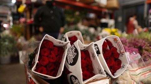 España pierde la mitad de la superficie de flor cortada por la falta de fiestas este año