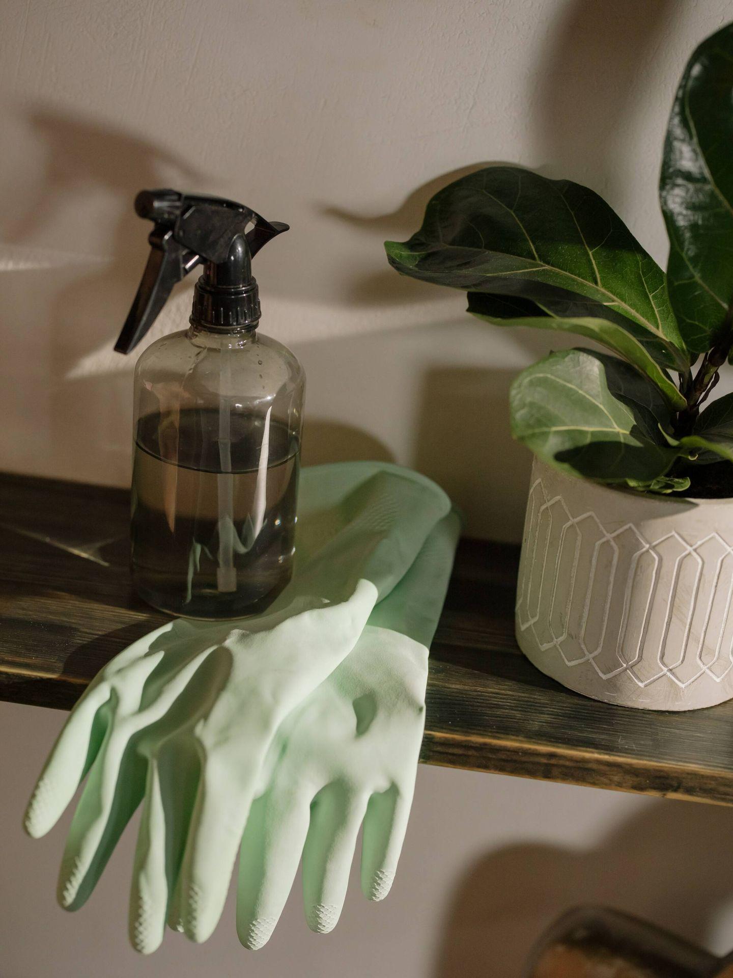 Power Hour, para limpiar y ordenar tu casa en una hora. (Cottonbro para Pexels)