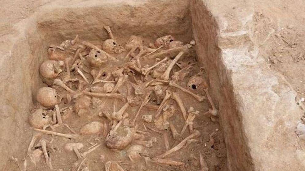 Foto: Imagen de los cráneos encontrados en la Sociedad Cervantina (CdM)