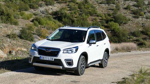 Subaru Forester Hybrid, todocamino de verdad