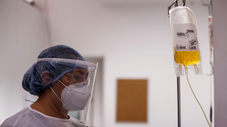 Un profesional médico procesa plasma. (EFE)