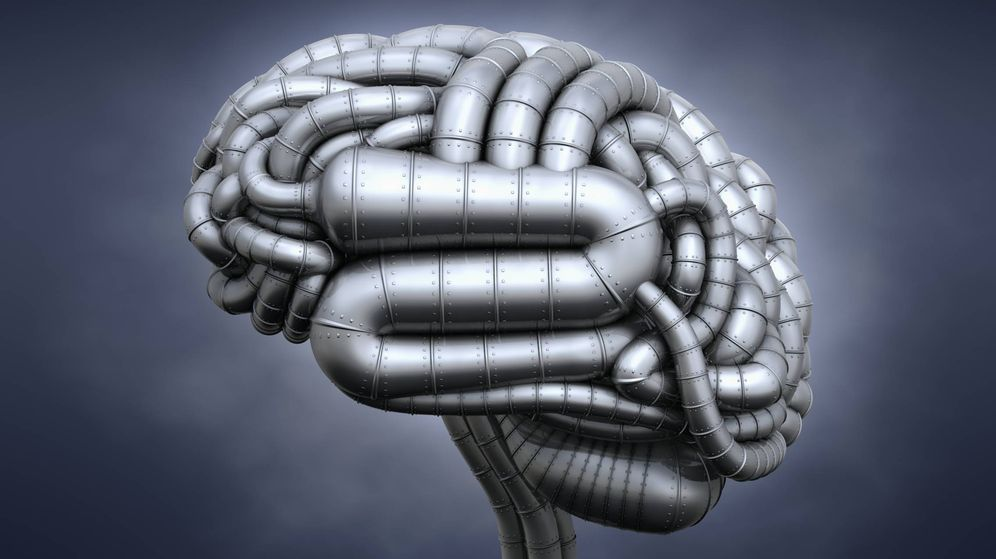 Foto: El desarrollo del cerebro humano estaría relacionado con la proteína ARHGAP11B (Foto: iStock)