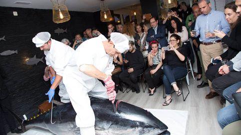 El atún rojo de almadraba, el cerdo ibérico del mar