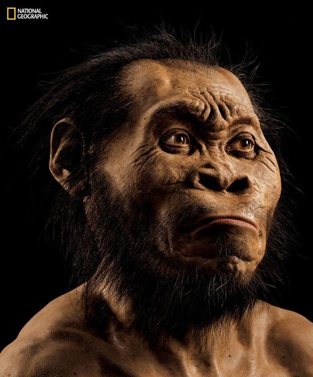 Foto: Reconstrucción del 'Homo naledi'. (Mark Thiessen/National Geographic)