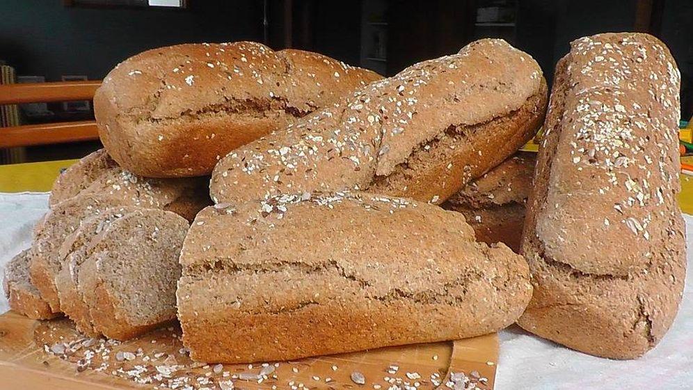 Foto: ¿Cómo se identifica un pan integral?