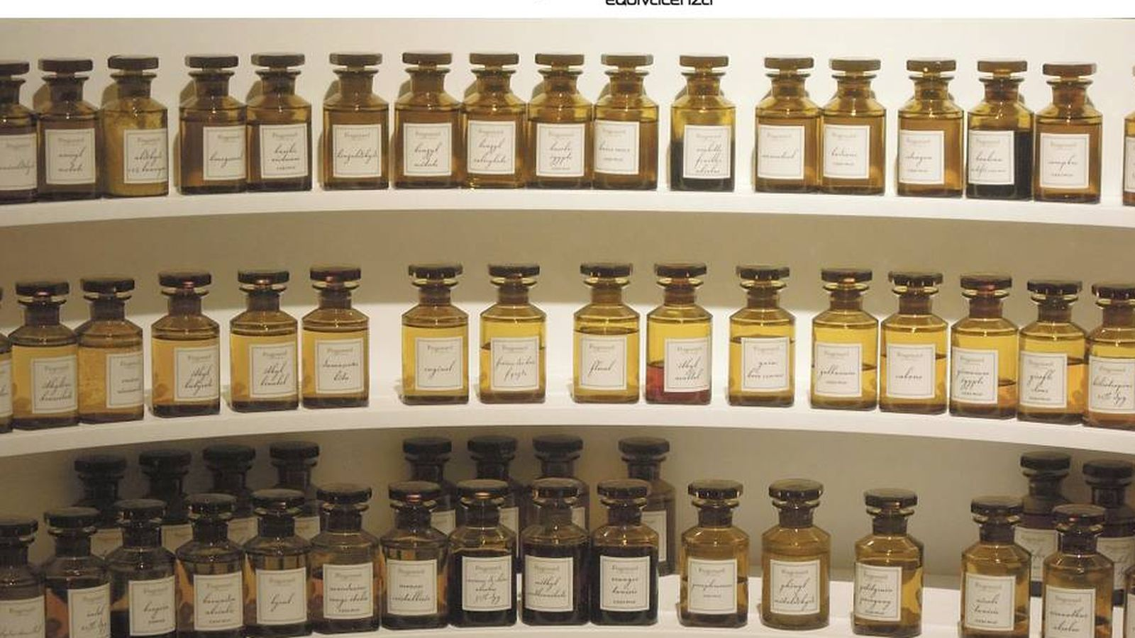 Cu nto cuesta realmente un perfume noticias de empresas for Cuanto cuesta un segway